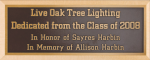 Cast Bronze Beveled Memorial Plaques