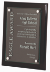 Black Piano Finish Plaque New Products