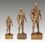 Sports Champion Swimming Male Sports Champion Resin Trophy Awards